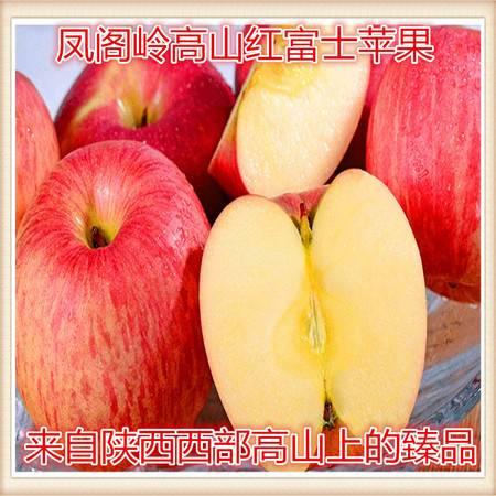 农家自产大秦农庄生态旗舰店16头精选80#以上红富士苹果,包退包换,新疆西藏青海内蒙古,海南不包邮。