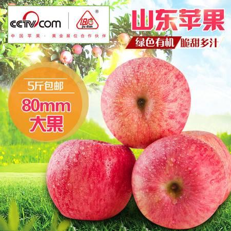 【山东旧店新鲜苹果5斤包邮】水果80mm大果脆甜多汁青岛特产脆果现摘产地直供