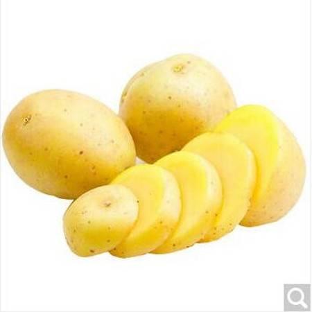 【清芷源】土豆500g(仅自贡市区购买)