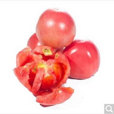 【清芷源】西红柿500g (仅限自贡市区销售)