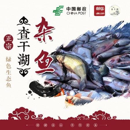 预售正查干湖冬捕野生有机杂鱼 淡水鱼一箱15斤