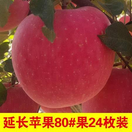 水南腐竹 井冈山特产 吉水腐竹 300g袋装
