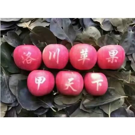 农家自产乐邮乐购洛川苹果24枚装 80mm以上 包退包换 (新疆,青海,西藏不包邮哦)