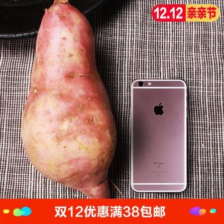 农家自产新鲜红薯芋头1个装  农家番薯红心地瓜 单果9量-1斤